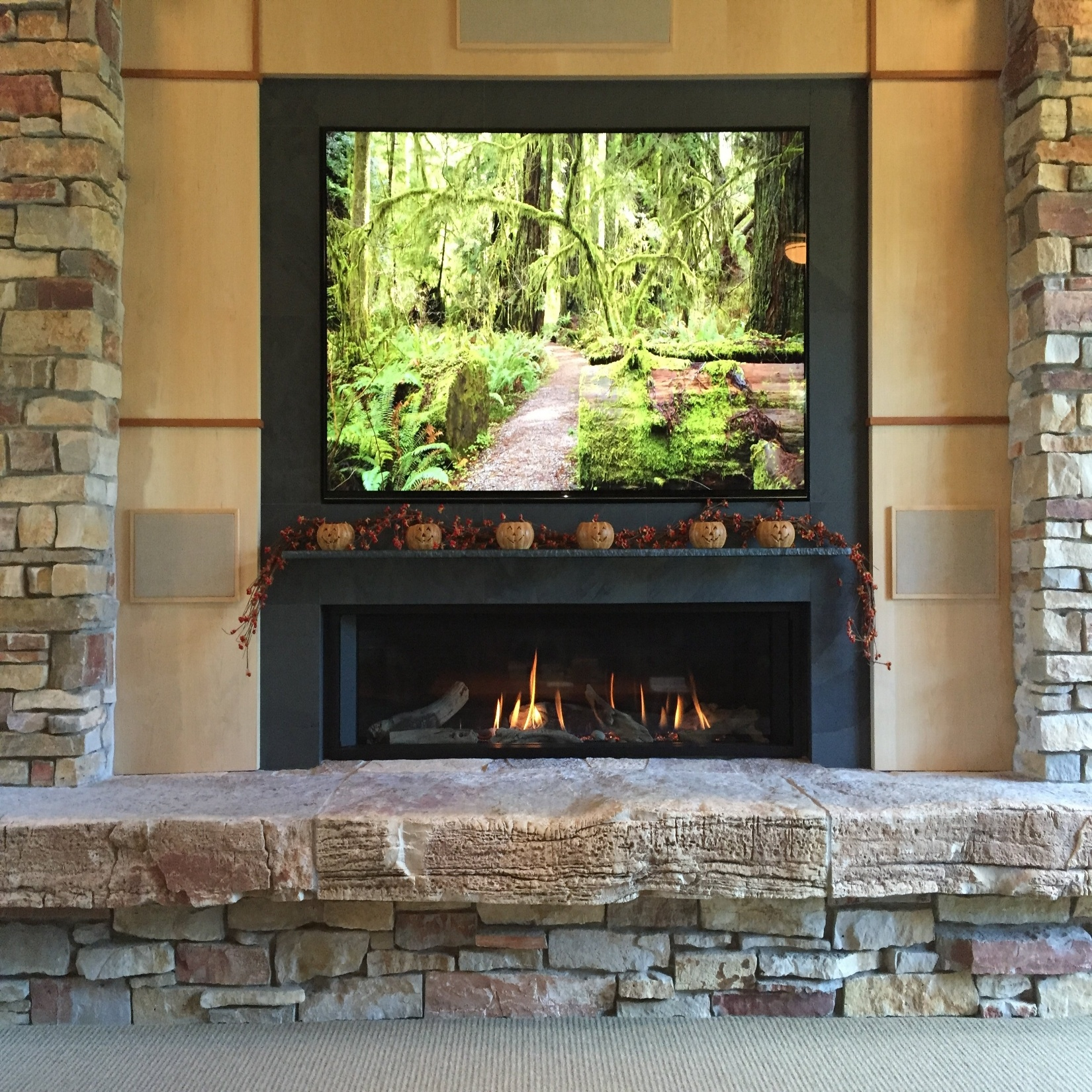 Linear Valor Fireplace