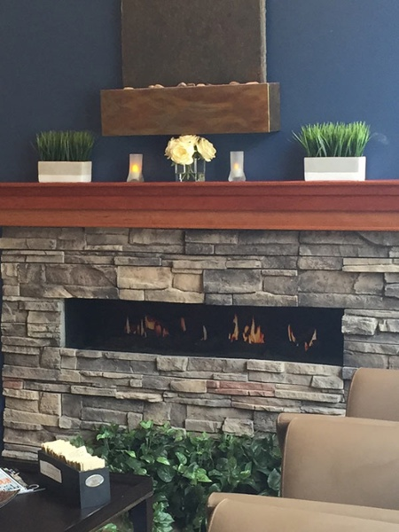 Electric Fireplace MN
